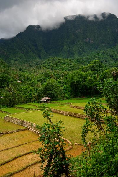 160222 - Bali - 3604.jpg