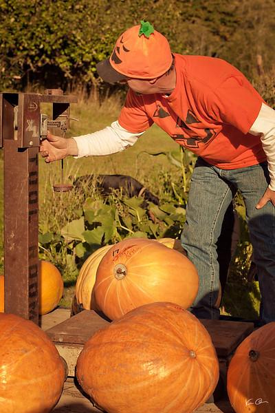 pumpkin fest 2011