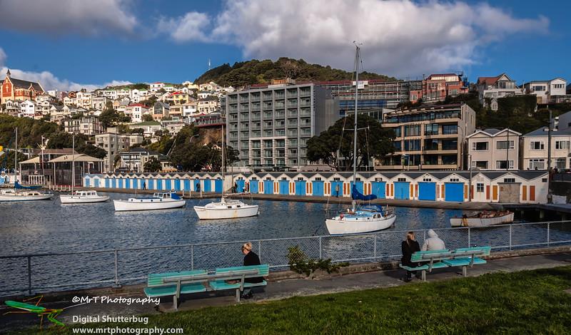 Boat sheds Oriental Bay Wellington