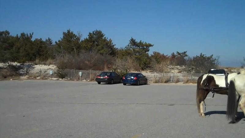 Cape 2 6 11.mp4