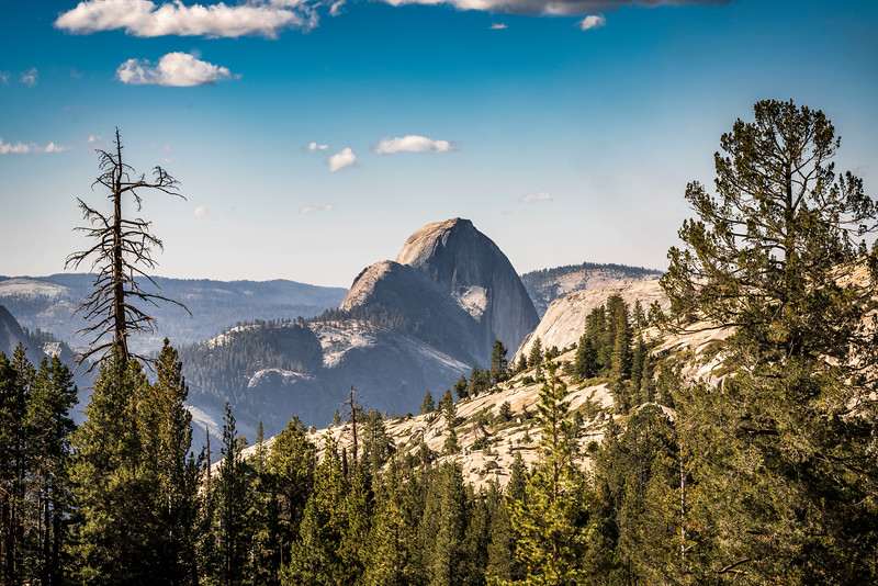 Half Dome - Olmstead Point (1 of 1).jpg