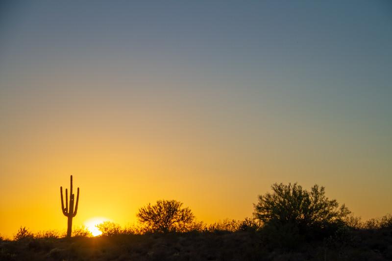 A Warm Desert Sunset Under a Cloudless Sky