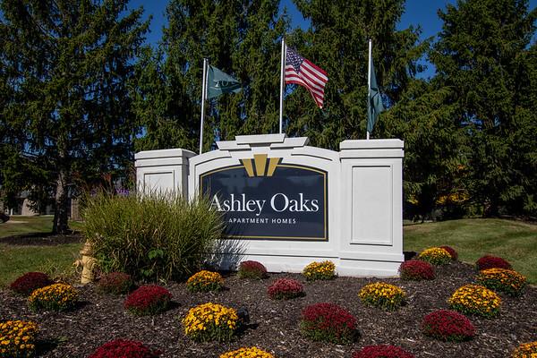 Ashley Oaks - October 2020
