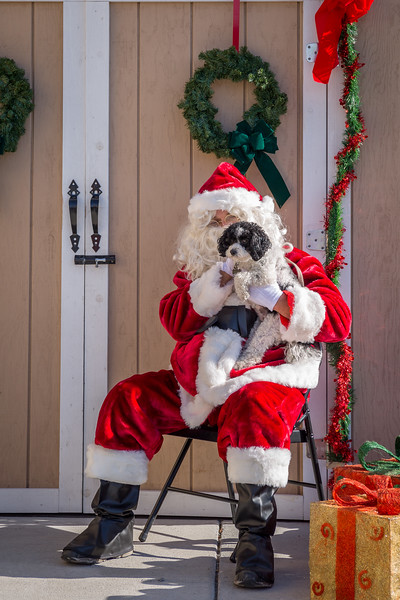 Pet Pictures With Santa-83.jpg