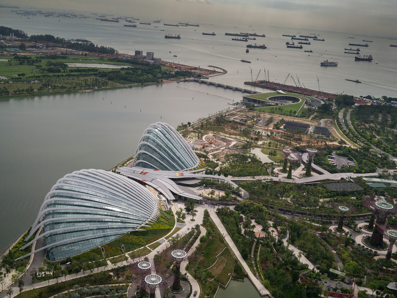 View from Marina Bay Sands looking down at the Garden by the bay.