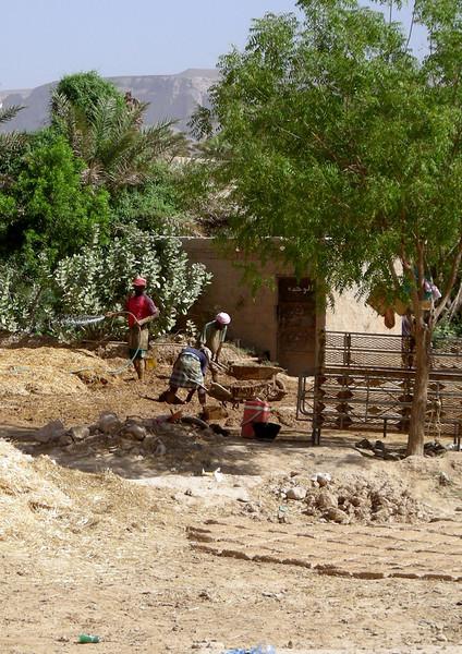 making mud bricks in the Hadramout