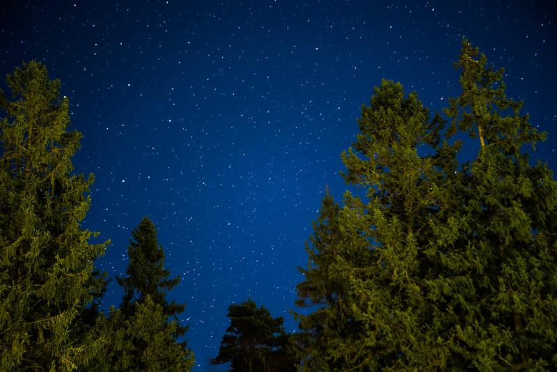 night-6.jpg