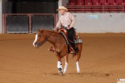 Wednesday Novice Horse Set 13 96-103