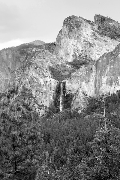 Bridalveil Falls and Cathedral Rocks In B/W