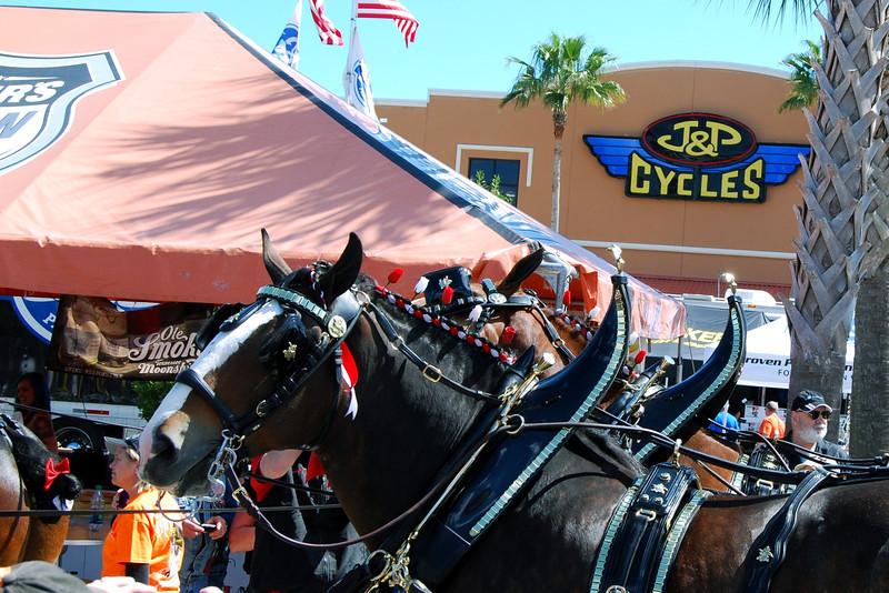 2014 Daytona Beach Bike Week (60).JPG