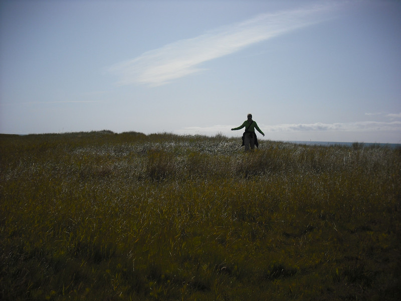 Jenni taking a stroll on the Snaefellsnes Peninsula.