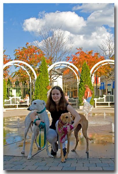 2008 11-08 Greyhound Walk