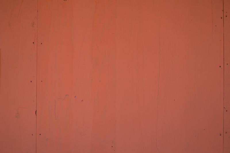 Wood BH5A8130.jpg