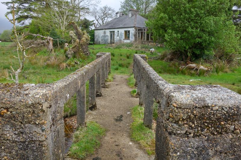 IrelandPIX-2016-04142.jpg