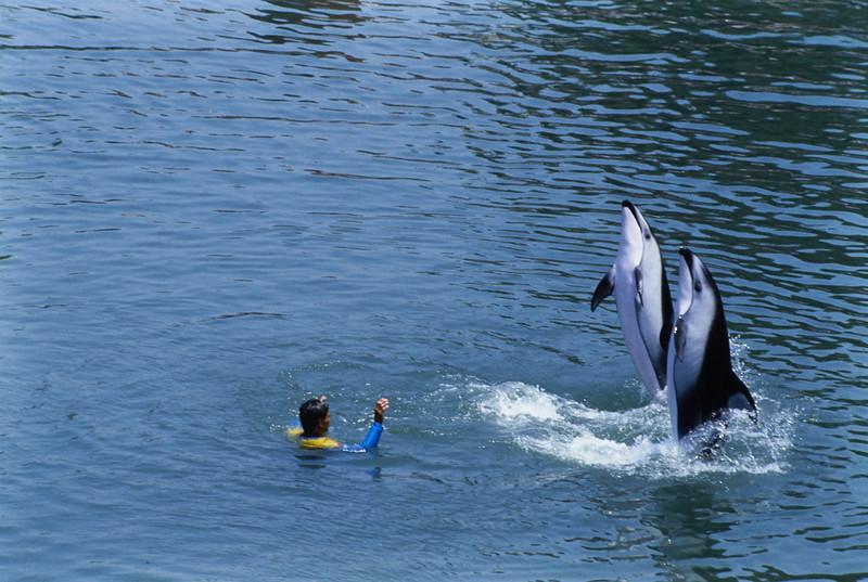 Seaworld 86_15.jpg