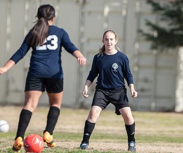 Ella's Soccer Championship Games 1-18-2014