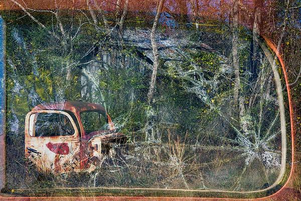 Abandoned - Janet Petty