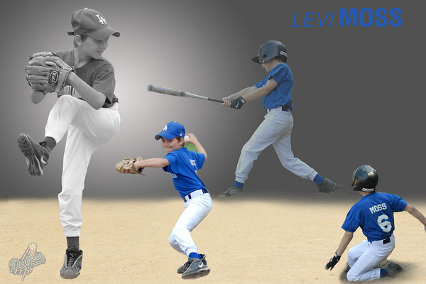 Levi Moss Collage 3