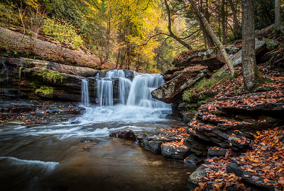 Dunloup Creek Falls-WV