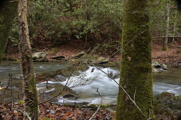 Cuhutta Wilderness 11/23/11