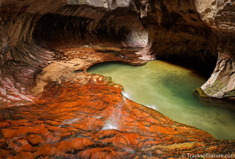 North Creek grotto, Zion National Park