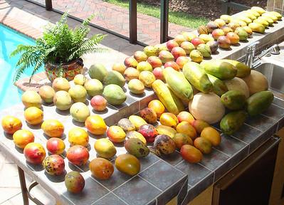 Fruit Care