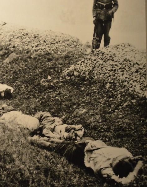 Victims 2.jpg