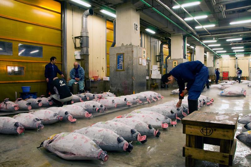 Japan_2010_NAT8686.jpg