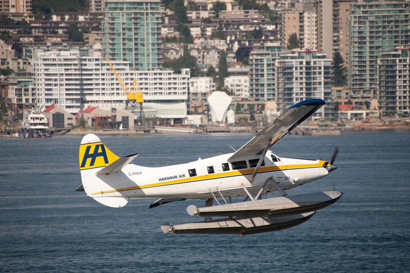 Float planes abound.