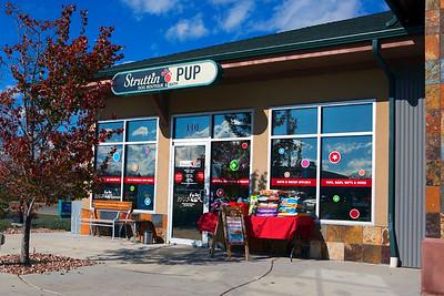 2015 Struttin Pup Shop Photographs