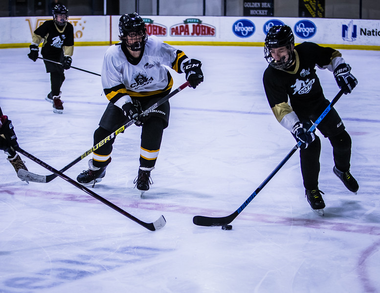 Bruins-77.jpg