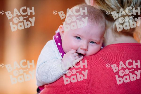 © Bach to Baby 2017_Alejandro Tamagno_West Dulwich_2017-03-24 021.jpg