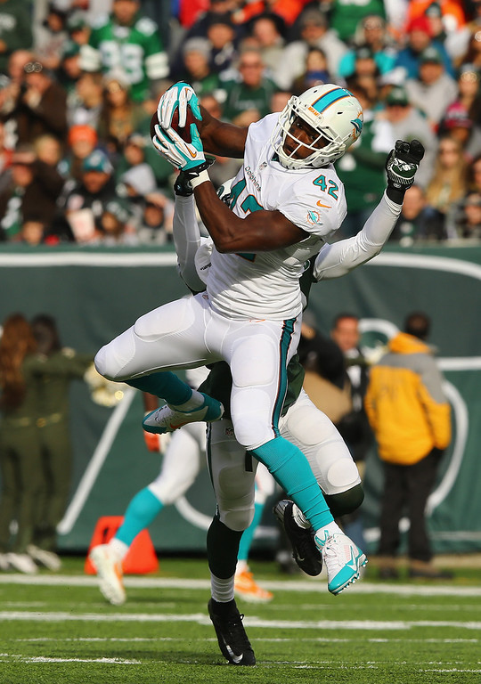 . Charles Clay #42 of the Miami Dolphins makes a catch against the New York Jets during their game at MetLife Stadium on December 1, 2013 in East Rutherford, New Jersey.  (Photo by Al Bello/Getty Images)
