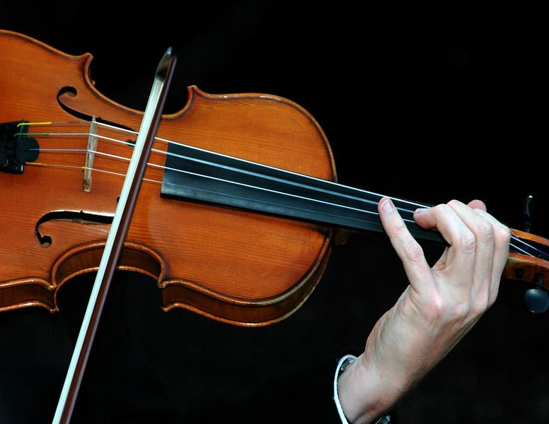 Violin  wed    SE.jpg