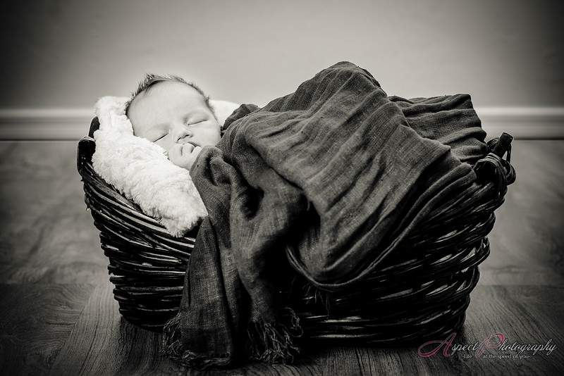 Ruby Newborn portraits