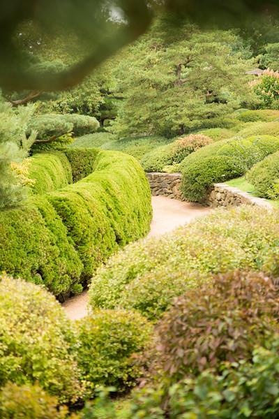 Chicago Botanic Garden 093.jpg