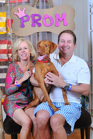 2013 POOCH PROM KEEPSAKE PROM PHOTOS FOR GUESTS