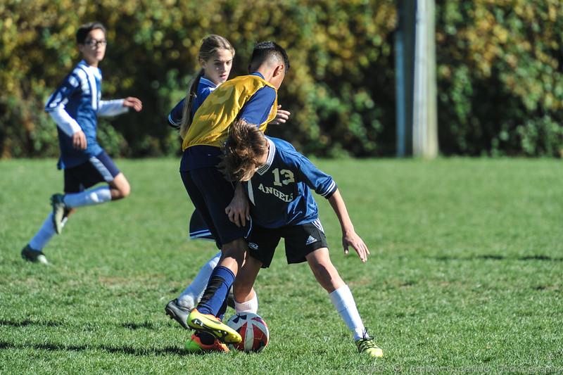2016-11-05_ASCS-Soccer_CYMFinals_v_HolyAngels@AIDupontDE_40.jpg