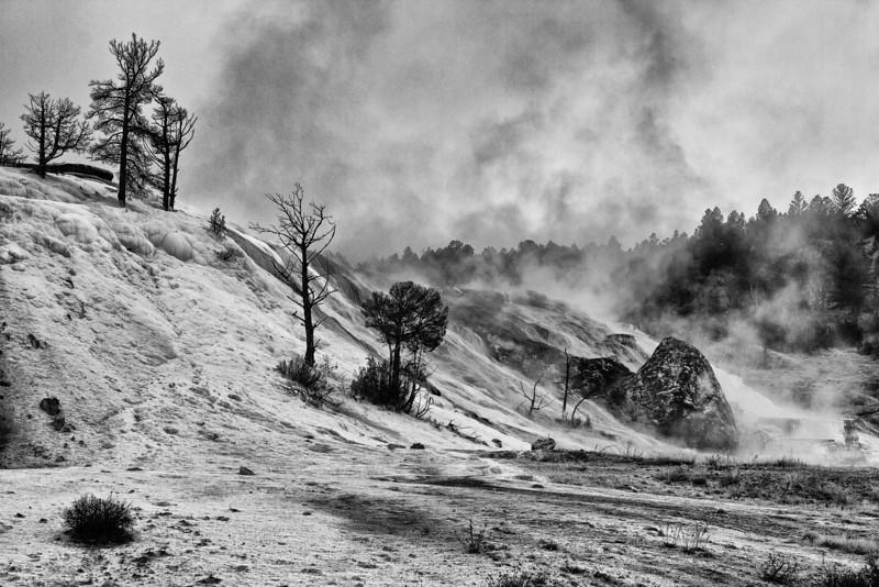 Yellowstone5 009-Edit-2.jpg