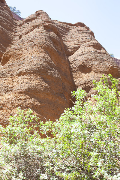 Arizona2014-101.jpg