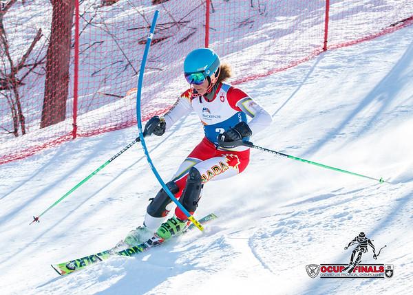 2017-03-18 Men Slalom Run 1