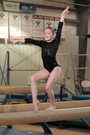 Gymnastics Inc - All Groups