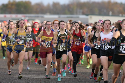 2017 MHSAA LP XC Finals - DIVISION FOUR (View or purchase photos here!)