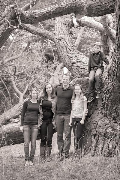 Madden Family 2013-102.jpg
