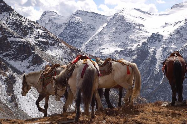 Songpan: Around Songpan - Horse Trek