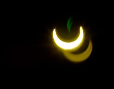 Suns of Wilton