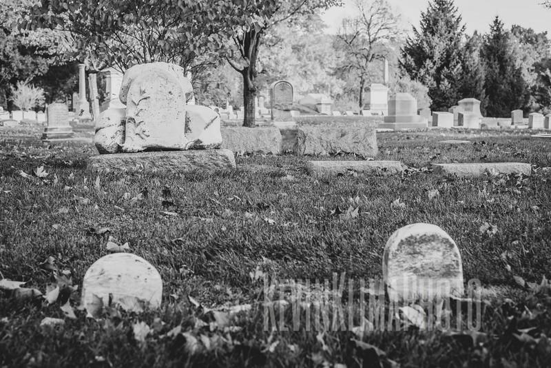 Graceland110218-168.jpg
