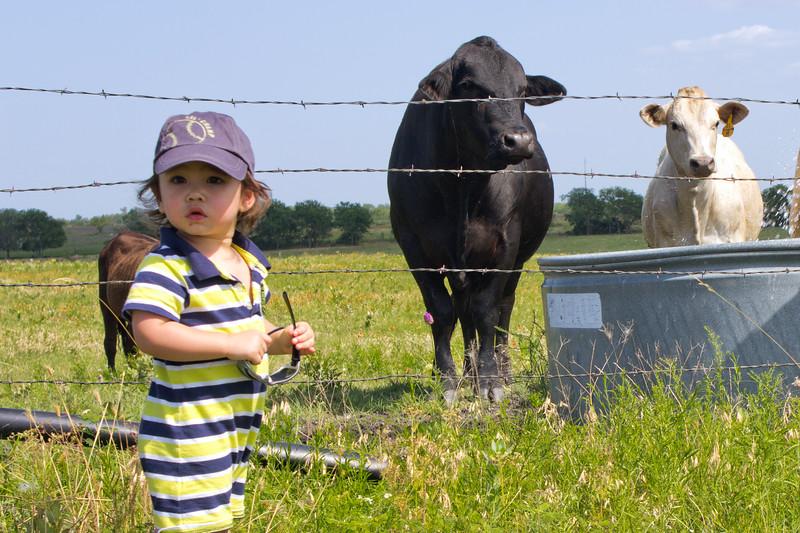 130623, Tyler on Farm (2).jpg