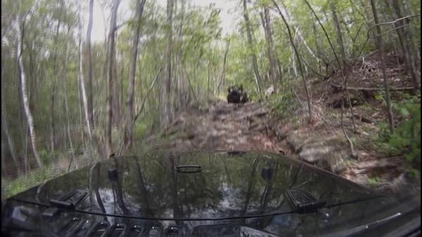 Off Road Videos