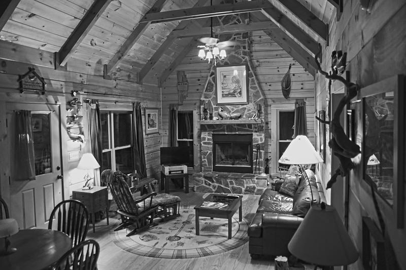 Hog Heaven Cabin Rossman NC_4 BW.jpg